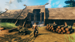 Valheim Screenshot © Iron Gate AB
